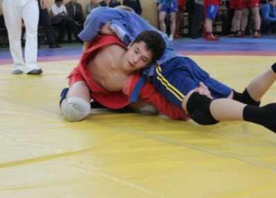 Брянская полиция проведёт юношеский турнир самбистов