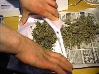 Юный брянец получил 2,5 года строгого режима за марихуану