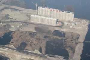 Брянская прокуратура потребовала прекратить вырубку Деснянского леса