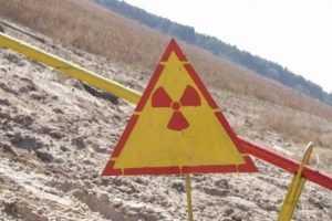 Правительство зачистит брянскую зону радиоактивного загрязнения