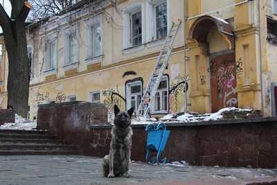 Власти Брянска пообещали не допустить сноса памятников архитектуры