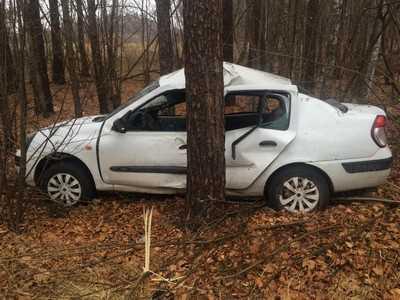 В Брасовском районе разбился водитель