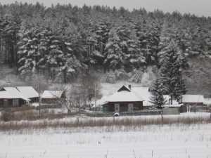 Брянск припорошит долгожданным снегом