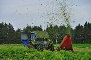 Брянские фермеры готовятся к импортозамещению
