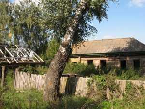 Жизнь родной деревни отца Людмилы Путиной продлила брянская лошадь