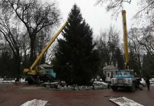 В Брянске установили 17-метровую елку