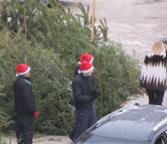В центре Жуковки ветер повалил новогоднюю ёлку