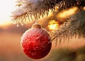 Первая ночь января на Брянщине будет самой холодной в году