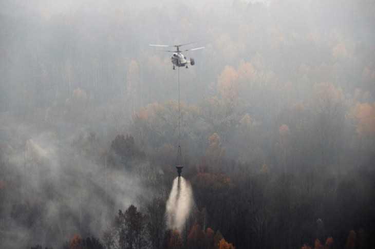 Спасатели прогнозируют торфяные пожары на Брянщине