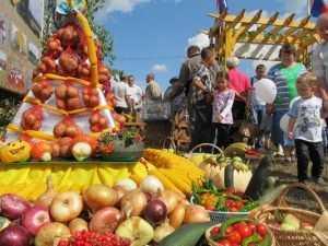 Главный производитель брянских овощей утонул в 300-миллионых убытках
