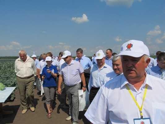 Брянский «День поля» проведут у Добронравова
