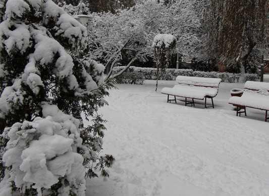 В ночь на 6 января Брянск заискрится под 14-градусным морозом