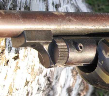 Брянская полиция за кражу ружья задержала опрометчивых воров