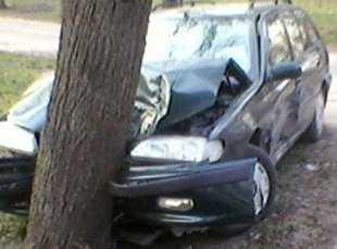 Брянский водитель, врезавшись в дерево, переломал ноги