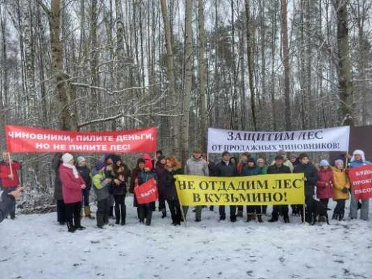 «Снежке» запретили уничтожать лес под Брянском до решения суда