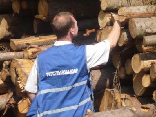 Инспектор брянского Россельхознадзора попался на взятке