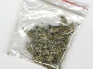 Задержан брянец, угощавший марихуаной 14-летнего племянника