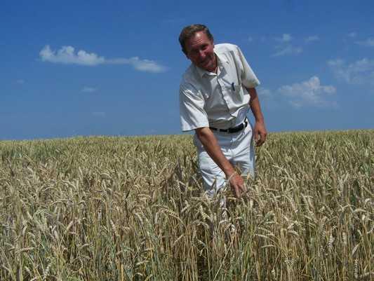 Рывок брянских аграриев повлек и рост убытков