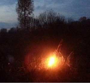 «Зеленые» заявили об опасности пожаров в брянских чернобыльских районах