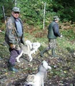 Боссы отобрали у стародубских охотников почти 90 процентов угодий