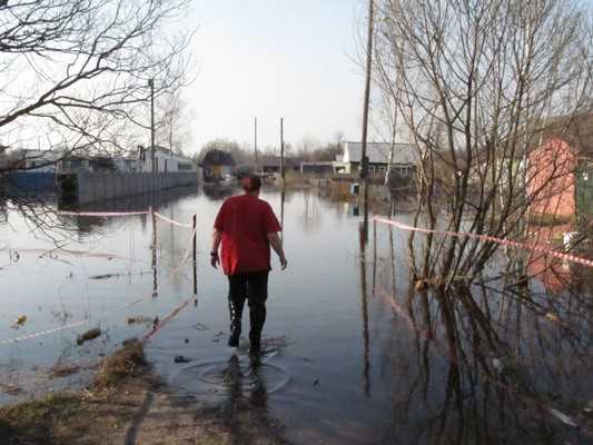 Бесснежная зима оставит Брянск без половодья, но деньги спишут