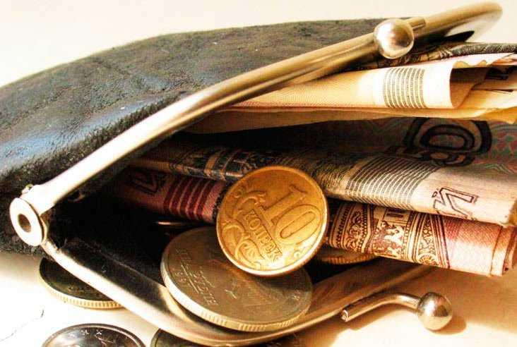 Статистка рассказала о доходах и расходах брянцев