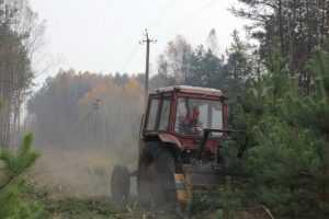 Брянские энергетики расчистят более 834 гектаров просек