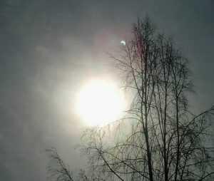 Вид солнечного затмения брянцам испортила облачность