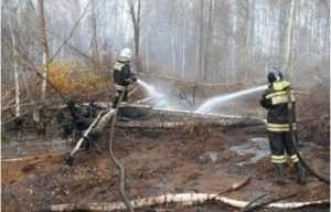 Брянские огнеборцы потушили возгорания торфяников в двух районах