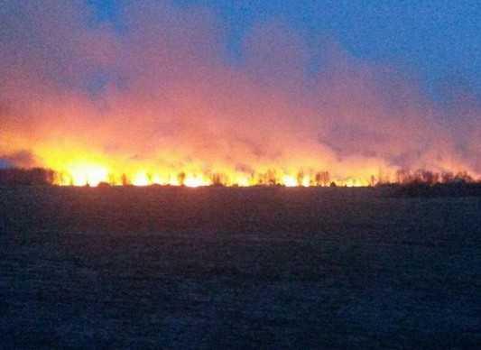 Брянский глава приказал чиновникам бороться с пожарами
