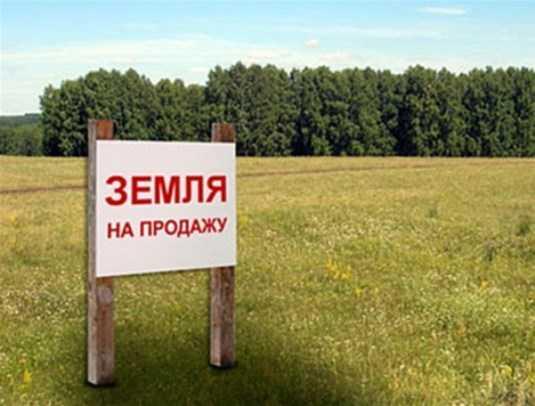 Брянского чиновника подозревают в продаже земли по заниженным ценам