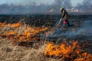 Пожар едва не уничтожил брянскую деревню