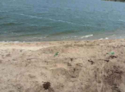 В брянском озере Орлик обнаружили тело 18-летней девушки