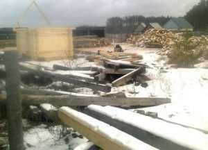 Работу брянских лесозаготовителей приостановили за сучья и щепки
