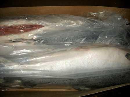 На брянской границе задержали грузовик с 34 тоннами лосося из Норвегии