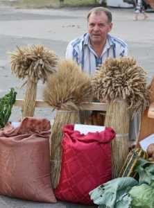 Брасовские крестьяне дороговизне удобрений противопоставили культуру