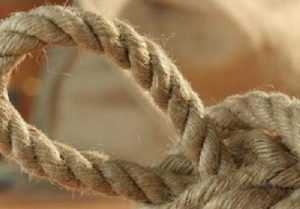 Отправлен в колонию узбек, убивший брянца 46 ударами и верёвкой