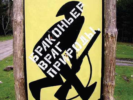 Брянский браконьер оштрафован за нападение на лесного инспектора