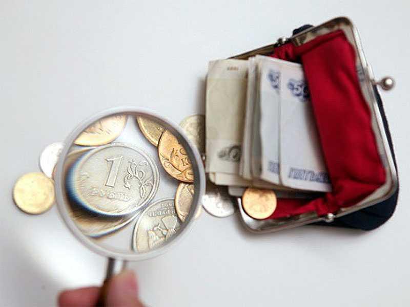 Прожиточный минимум в Брянской области составил почти 9 тысяч рублей
