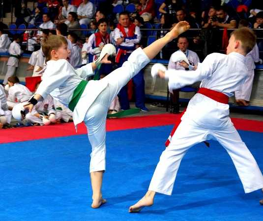 Брянцы взяли 13 медалей на международном турнире по каратэ