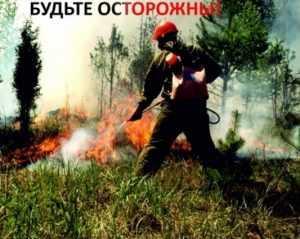 В Брянске ввели особый противопожарный режим