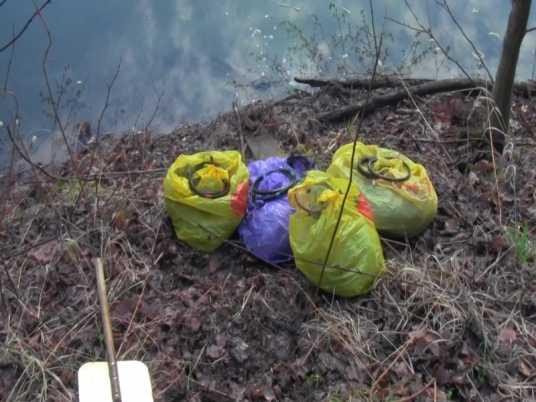 Брянские полицейские поймали криминальных рыбаков