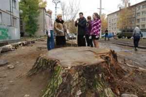 Ученые подготовят схему озеленения Брянска