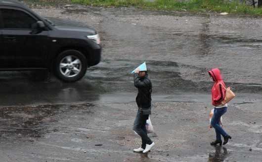Жара в Брянске сменится дождями