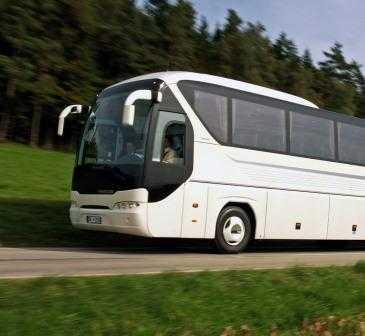 Из Крыма в Брянск побегут автобусы