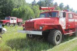 Большой лесной пожар ликвидировали в Брянской области