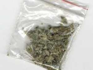 Отправлен под суд брянец, угощавший наркотиком 14-летнего племянника