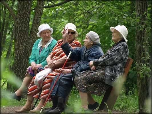 Население Брянской области сократилось до 1 миллиона 250 тысяч человек