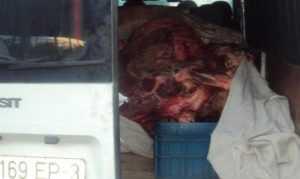 Брянские специалисты вернули мясо и землянику белоруссам