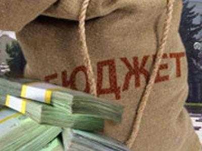 Брянские депутаты поделили 50 миллионов из казны
